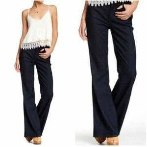 Level 99 Dark Wash Tanya High Rise Flare Jeans 26